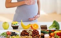 """بهترین تغذیه در دوران بارداری درست خوردن در دوران بارداری اهمیت زیادی دارد.زیرا رشد و تکامل جنین شما وابسته به تغذیه شما در دوران بارداری است. عبارت """" غذا خوردن بجای دونفر"""" کاملا درست نیست. درست خوردن در بارداری به معنی زیاد خوردن در بارداری نیست. اما شما باید متعادل، متناسب و متوازن بخورید تا همه مواد مغذی مورد نیاز بدنتان تامین شود. بهترین تغذیه در دوران بارداری باعث وزن گیری مناسب شما در دوران بارداری میشود. مواد مغذی که ممکن است در دوران بارداری دچار کمبود این ریز مغذی ها شوید: آهن، فولات،B12، ویتامین A و ویتامینD . اغلب زنان در دوران بارداری دچار کم خونی آهن میشوند که این کم خونی اغلب باعث کم وزنی کودکان در هنگام تولد میشود. مهم است که در دوران بارداری رژیم غذایی متعادل داشته باشید. درباره بهترین رژیم غذایی ماه اول بارداری بیشتر بخوانید. بهترین تغذیه در دوران بارداری هر مادر باردار برای داشتن بهترین تغذیه در دوران بارداری باید هرم غذایی دوران بارداری را بشناسد. با اجزای آن آشنا شود .هر مادر سالم و باردار باید در طول روز حداقل از هریک از واحدهای غذایی زیر مصرف کند. هرم غذایی در مادران باردار هرم غذایی مادر باردار 1- راهنمای تغذیه ای مادر باردار با وزن مطلوبد: در این هرم غذایی باید 5 گروه غذایی اصلی در طول روز توسط مادر باردار مصرف شود: گروه اول : نان وغلات. روزانه 7-11 واحد باید از این گروه مصرف شود که هر واحد حدود 30 گرم است. گروه دوم:سبزیجات: روزانه 4-5 واحد باید در روز مصرف شود. هر واحد تقریبا 100 گرم است. گروه سوم: میوه ها: روزانه 3-4 واحد باید مصرف کند. هر واحد 100 گرم است. گروه چهارم:شیر و لبنیات: باید روزانه 3-4 واحد مصرف کند. گروه پنجم:گوشت و ماکیان: روزانه 3 واحد پروتئن حیوانی+1 واحد پروتئین گیاهی (حبوبات) که هر واحد حدود 30 گرم میشود. گروه متفرقه: مصرف روغن ها محدود و 6 واحد در روز که حدود 5گرم در هر واحد میشود. گروه قندها حدود 4 واحد و هر واحد 5 گرم است. هر واحد غذایی در هر گروه بصورت زیر تعریف میشود: گروه کربوهیدرات: هر واحد= 30گرم انواع نان = یک کف دست ( یک مربع بابعاد 9*9 سانتیمتر مربع ) نان سنگک یا نان بربری یا تافتون بدون انگشت = 4 کف دست لواش = 30گرم نان جو = 30 گرم نان تست = 30 گرم نان همبرگری یا نان باگت ( بعد از کشیدن وزن خمیرش دور ریخته شود)"""