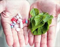 بهترین مسکن های گیاهی جایگزین مسکن های شیمیایی