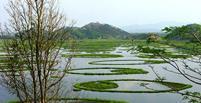 دریاچه شناور، از عجیب ترین جاذبه های هند (+تصاویر)
