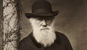 سخنان زیبا و آموزنده چارلز داروین