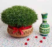 کاشت سبزه با عدس