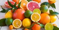 15 غذایی که سیستم ایمنی را تقویت می کنند