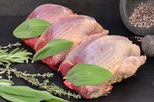 فواید شگفت انگیز خوردن گوشت کبوتر برای بدن